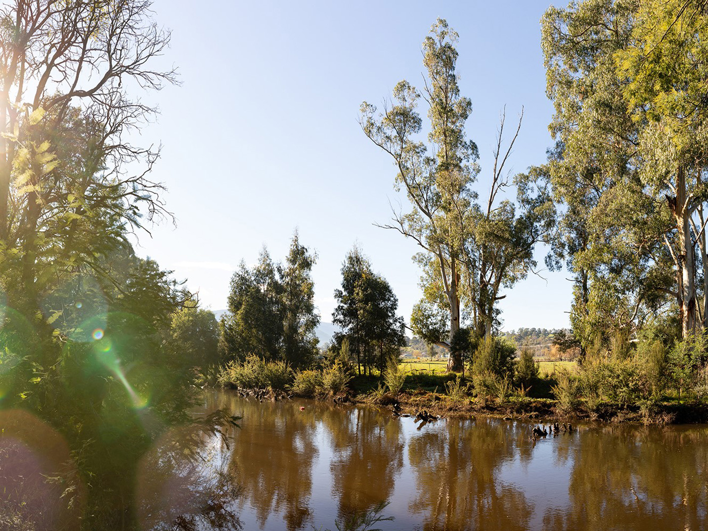 Photo of the Yarra River